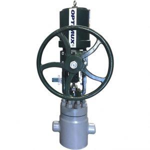 2-OpGL-XT-Fabricated-Globe-Body-Control-Valve-G6